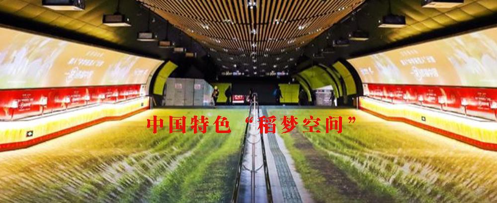 """5 中国特色""""稻梦空间""""来啦!"""